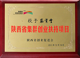 Advanced enterprise of shaanxi enterprise promotion association