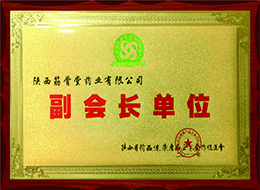 Chinese medicine promotion association