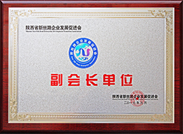 New-silk-road-association-vice-President-unit.jpg