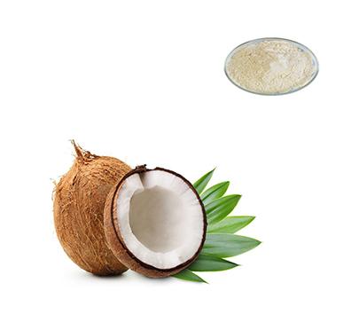 organic-coconut-extract-powder